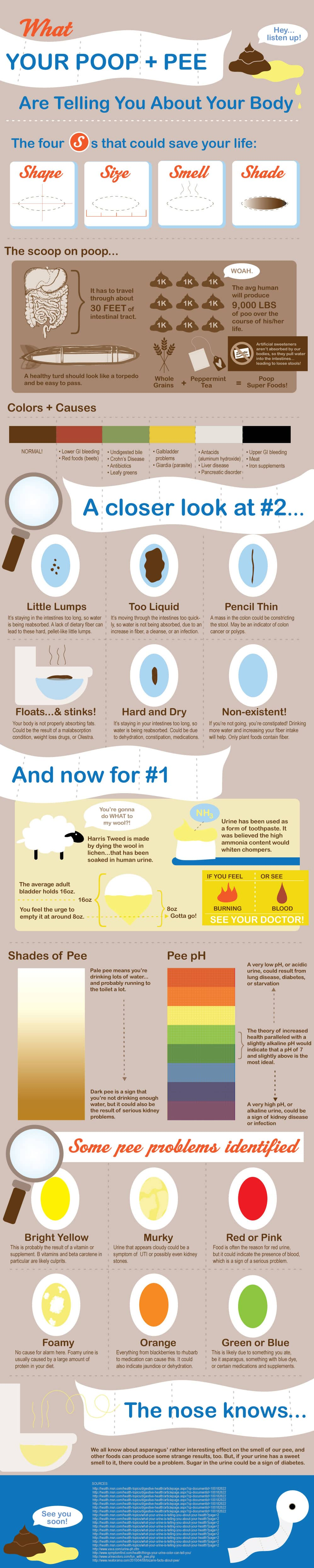 What Your Poop (and Pee) Tells About Your Body (Infographic)