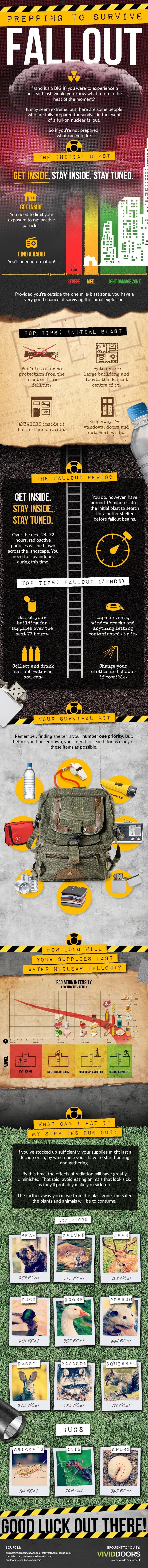 How to Survive Nuclear Fallout (Infographic)
