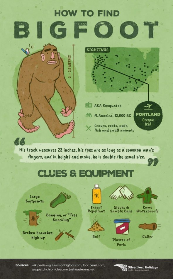 How to find Bigfoot