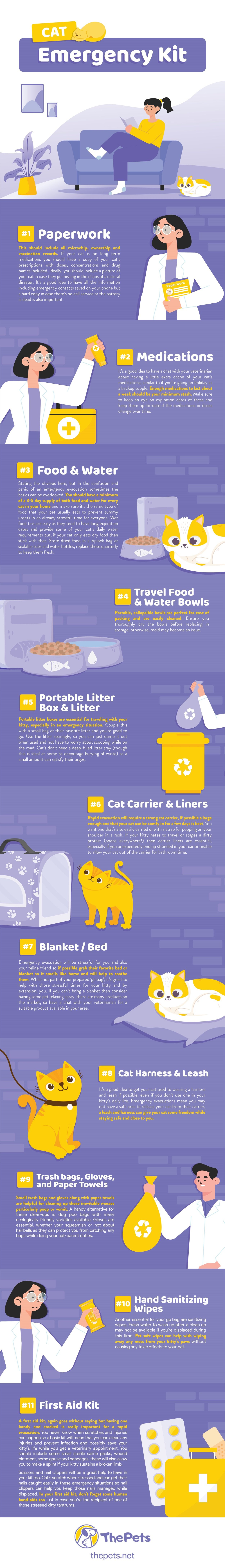 Cat Emergency Kit - How To Make a Cat First Aid Kit