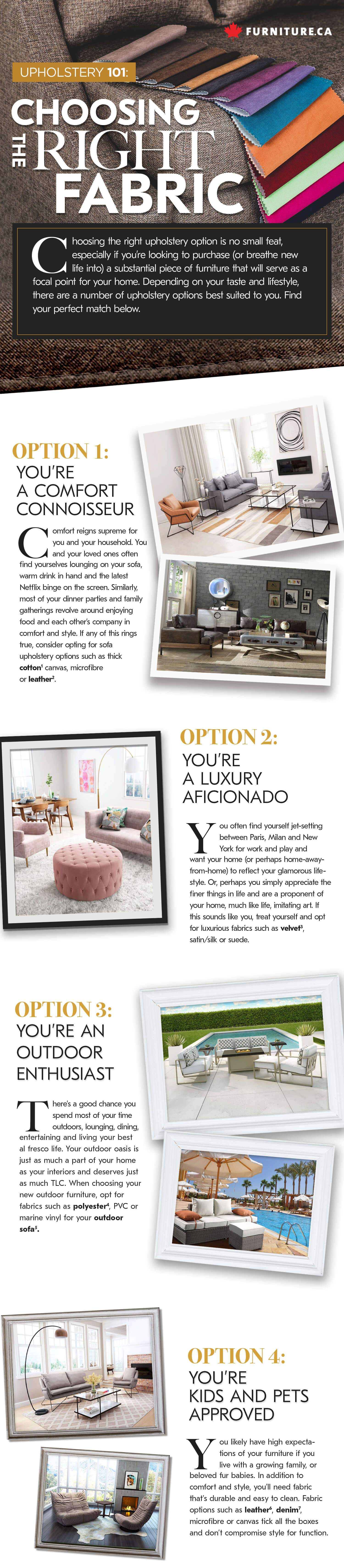 Upholstery 101 (Infographic)