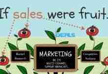 If Sales were Fruit