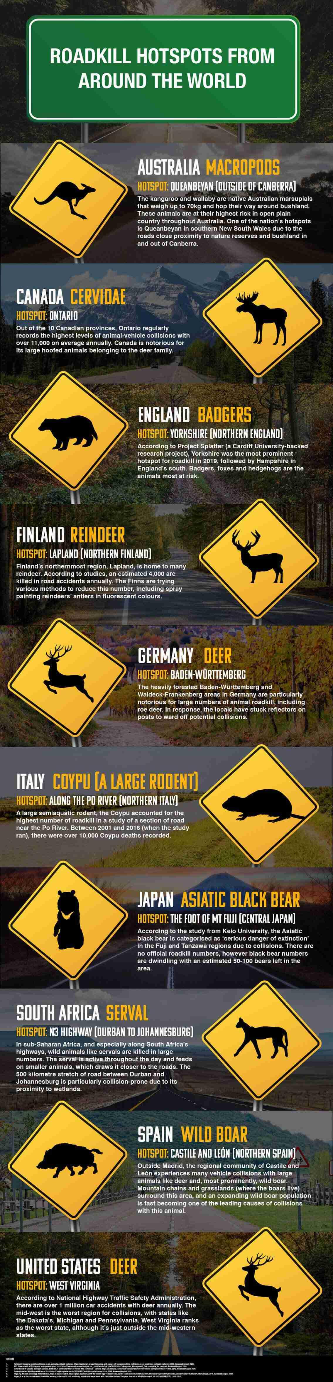 Roadkill Hotspots From Around the World