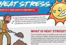 preventing heat stress